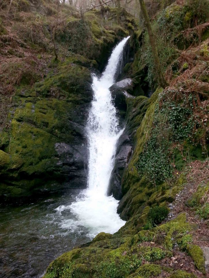 Waterfall at Dolgoch